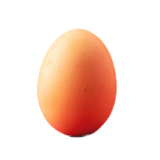 Frische Eier vom Hofladen Größe M